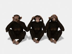 Monkeys See No Evil