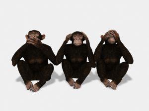 Monkeys See No Evil